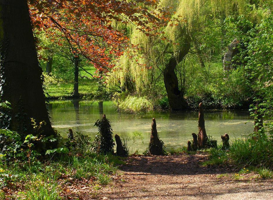 Alcsúti Arborétum